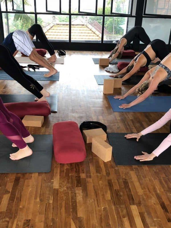 yoga teacher training students in downward facing dog